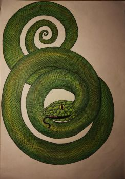 Snake by MetalFaie