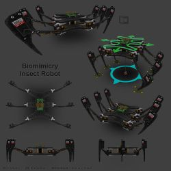 Biomimicry Insect Robot by ToTac