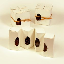Pine Cone Package Design by MichellLaurence