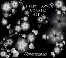 Cherry Flower corners by Lileya