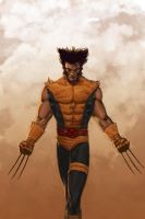 WOLVERINE WEDNESDAY - 12 by reau