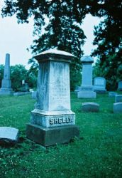 shelley. by TuNages