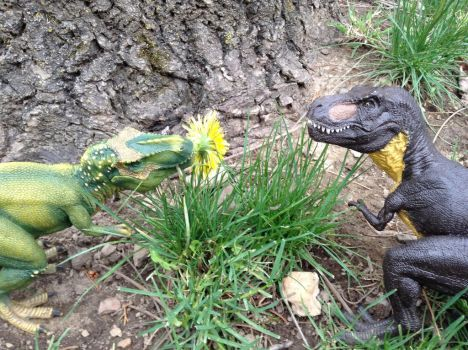 A Male Tyrannosaurus Rex Is Taking His Chances by SpinosaurusQueen
