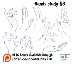 Hands study 3 by Kate-FoX
