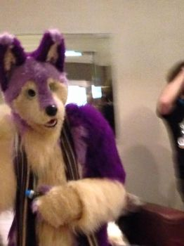 Confuzzled 2015 - Me!!! by Keevanw