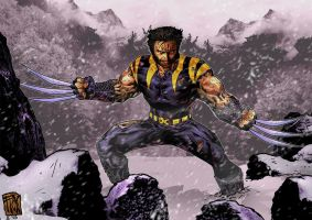 Wolverine by Fico-Ossio