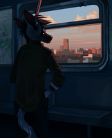 going home by ev-oo
