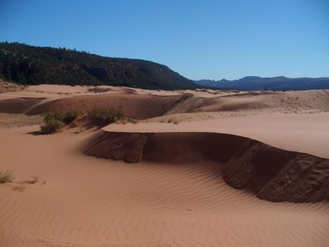 Coral Sand Dunes 3 by AndySerrano