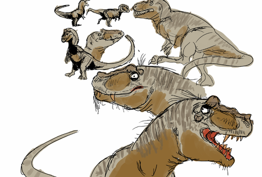 Character Design Session: Lythronax by snugglesthedinosaur