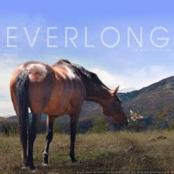 Everlong: Nocturne by chisuchina