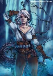 The Witcher III - Ciri by diabolumberto