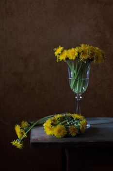 with a wreath of dandelions by An-gora