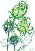 Floral- Thistles 300dpi by exclusivelysu