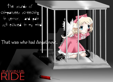 Maximum Ride: Angel by pickle131