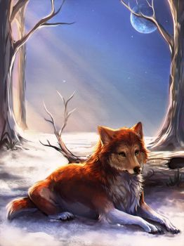 Ginger Wolf by Reiquin