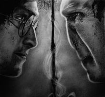 Harry Potter and Voldemort by Nheori
