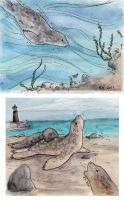 Seal Watercolours by brightling