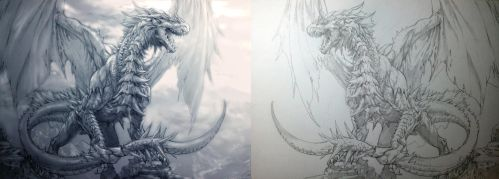 Dragon sketch verstion. by aenaluck
