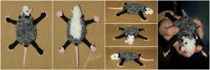 The Crocheted: Dead Possum by janey-in-a-bottle
