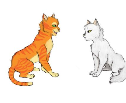 Practise Cats by Mohawkdandy