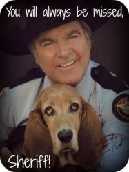 Rest In Peace, James Best by nicolelylewis