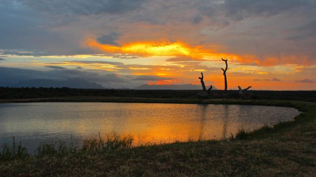 African Sunset by ZevGordoni