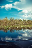 The Glades - 2 by pagit