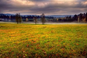 Afternoon Mist by MarcoHeisler