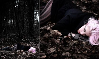 Fallen from the Sky by Des-Henkers-Braut