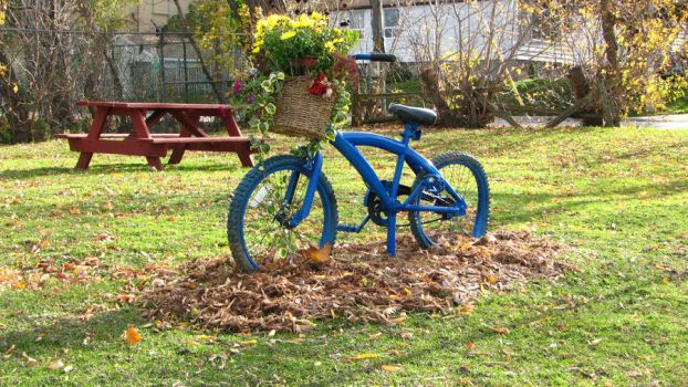 Bicycle on a Garden by SolitaryNerd