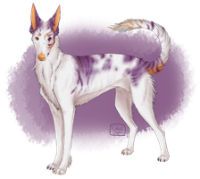 Ibizian Adopt [AVAILABLE] by Unlikely-Adopts