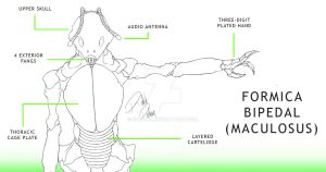 Formica bipedal Diagram by SH9DOW