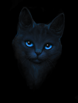 Blue Cat by Shadowpath-P