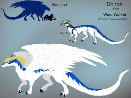 Crossover:HTTYD and Legendz-Shiron Ref Sheet by BlackDragon-Studios