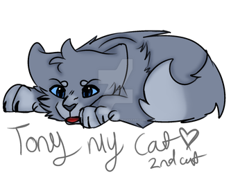 Tony.. meh cat... my 2nd cat - idfk gift or not gi by ARTISTwolfgirl493