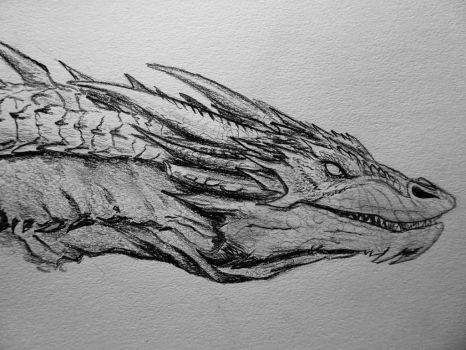 Smaug by Lonestarnoctus123