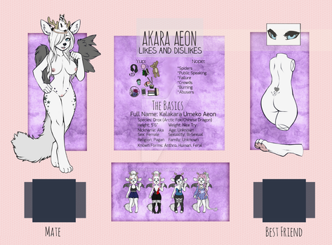 [Updated] Akara's Reference Sheet by lynxtothepast09