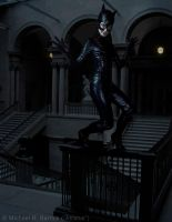 Catwoman by Atratus