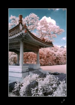 Chinese Garden _3 by stevenjo