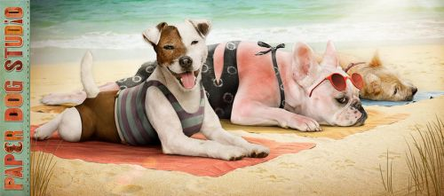 Paper Dog days of summer by PaperDogStudio