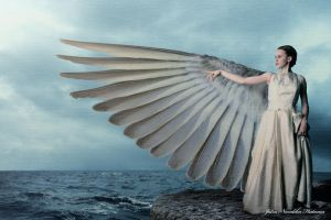 Winged Spirit by Jatra