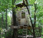 Tree House by conservancy