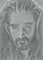 091/365 - Thorin Oakenshield by BikerScout