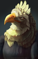 Noble Avian by BlindCoyote