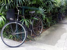 singapore bikes 2 by v-collins