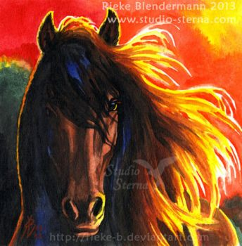 Red Approach - for sale by rieke-b