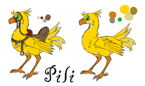 Pili reference by Eevee33