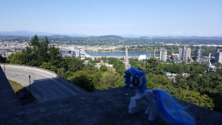 Ponies Around the World 2017 - OHSU by SherlockBoy