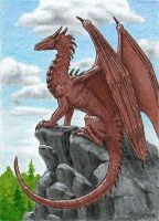 Overlook ACEO by Strecno