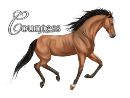 Bel's Countess by Syhne